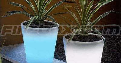 ? Glowing Flower Pots. Paint flower pots with Rustoleums Glow in the Dark paint. Absorbs sunlight by day glows at night.