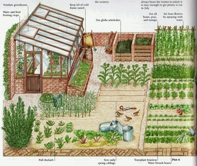 Garden layout example