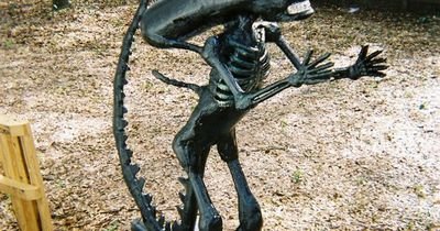 DIY Alien from a plastic skeleton & 2 liter coke bottles!! You can expect several of these running my yard on Halloween. Hahaha!!