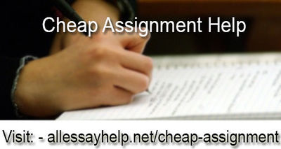 Get Cheap Assignment Help with experts and be a topper among your classmates. We make you brighter than others. Prices are very cheap not bigger than your dreams.