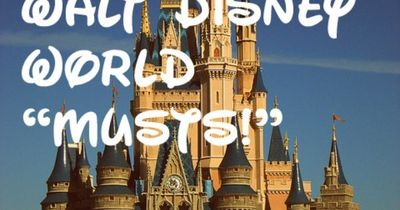 Top 10 Grown-Up Walt Disney World �€œMusts!�€   I feel like this applies to anyone who is older than the average elementary school kid at Disney.