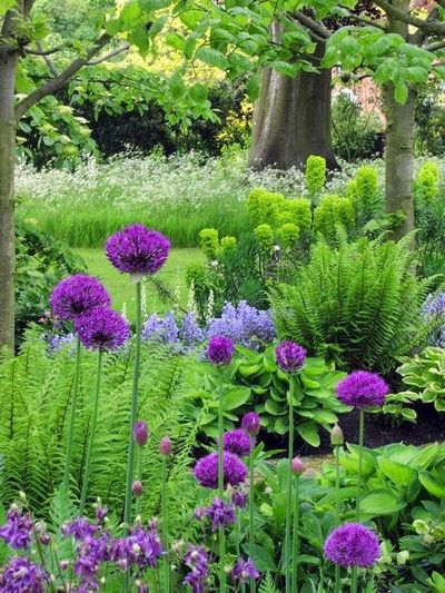 Image result for woodland shade beds
