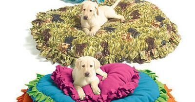 DIY pet bed... so really you just fold a blanket in half, fringe the edges on every side except the fold, make long enough to closely tie the knots together, stuff with anything you wish. old crib mattress, couch cushion, old pillows... my gosh this doesn...