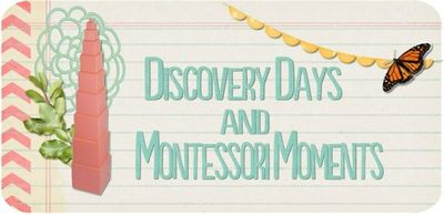Discovery Days and Montessori Moments