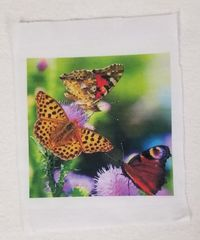 Fabric Panel,Butterflies, 4x4 or 6x6 or 8x8, Poly Quilt Fabric by the Square, Crafts, Quilts, Quilters, Patchwork, Needle Point, Patchwork $7.95