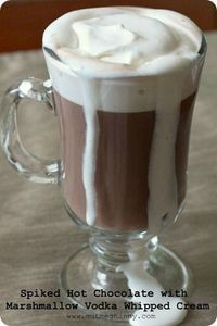 Spiked Hot Chocolate with Marshmallow Vodka Whipped Cream. Not for me but maybe