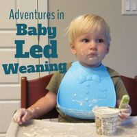 Adventures in Baby Led Weaning