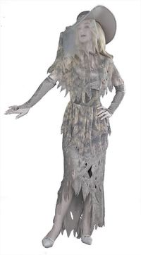 Ghostly Gal Costume $36.91 https://costumecauldron.com