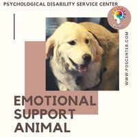 In this modern era, people are becoming more interested in buying Emotional Support Animals for improving their life. For registration of service dogs, we have many licensed therapists for you who can write the required valid ESA letter for you as per you...