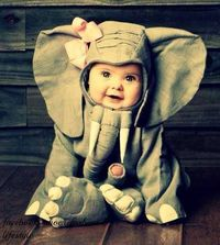 Thispostwas discovered by Kendra Korshak. Discover (and save!) your own Pins on Pinterest. | See more about elephant costumes, child halloween costumes and first halloween costumes.
