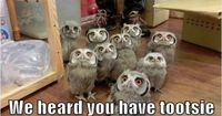 Hoo has Tootsie Pops? lol love their individual faces - they crack me up!