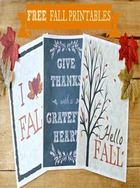 Are you ready for fall? Get started on your fall decorating for a little to no money with three fall printables for almost every decor.