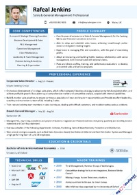 sales-and-general-management-professional-visual-resume-sample-mcdv0039.png