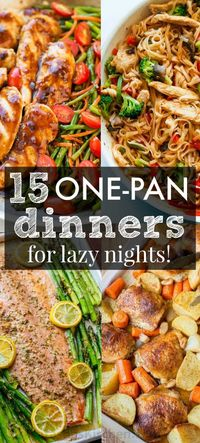 15 One Pan Recipes to Get You Excited for Dinner!