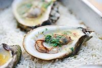 Grilled Oysters ~ Raw oysters not your thing? Try grilling them! Serve with lemon juice, butter, parsley sauce. ~ SimplyRecipes.com