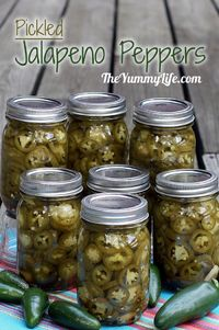 PICKLED JALAPENO PEPPER SLICES. These are so much better than those store jars! Store in the fridge for months, or can them to last longer & give as gifts. www.theyummylife.com/Pickled Jalapeno Peppers