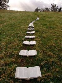 There is no courser like a page To take you miles away...