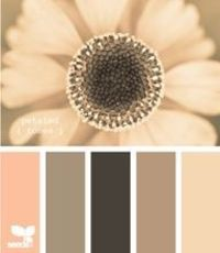 Yay finally found the website that has 100s of color pallet combos.