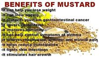 Mustard is good for health For Health