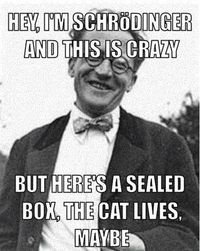 Hahahaha! The cat lives maybe! Ah that Schrodinger...one funny guy :)