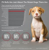 Most pit bulls would rather babysit the kids than be forced to fight, which is just one reason breed-specific legislation is a cruel waste of resources. Preside