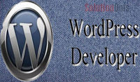 https://solutiondots.com/wordpress-theme-builder