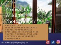 We are offering you photography services at an affordable cost. We are delightful to offer all of our images as fine art prints, posters and on various medium for private, commercial or corporate use. For more details visit our website. Our freelance trav...