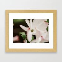 Mother's Day Gift Ideas! Close up digital photograph jpeg file (print your own) of a pink Dogwood Tree Blossom taken in Oregon Winecountry $12.99