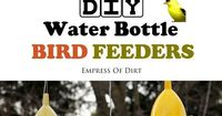DIY water bottle bird feeders hold nijer seed for small birds including goldfinches, juncos, Indigo buntings, and more. It's a simple, frugal recyled craft. Mak