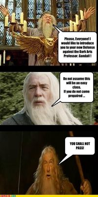 Gandalf Would Be The Best Defense Against The Dark Arts Teac