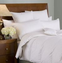 Organa 650+ White Goose Down Pillow by Downright $234.00