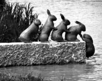 [Image #3 of Week: Oct 7th - Oct 11th] This is a sculpture in Söderköping River, Sweden. I just really enjoy the little children's tale that is being told. No words are necessary to ascertain the meaning of the piece, and it's quick simple too. ...