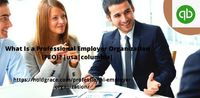 What Is a Professional Employer Organization (PEO) usa columbia (1).jpg