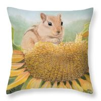 cute squirrel pillow