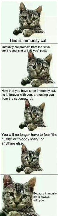 IMMUNITY CAT!