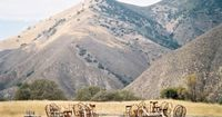 The Figueroa Mountain Farm House is a dream wedding location for any bride... Or photographer for that matter! Driving up the mountain you couldn't help but be