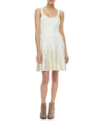 Free People Sleeveless Foil Ombre Lace Dress