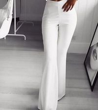 Party Office Summer Autumn Elegant Women's Flared Pants