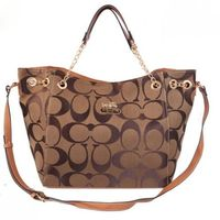 Coach Logo Monogram LZ503 Shoulder Bag In Coffee