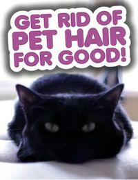 Get Rid of Pet Hair for Good! How to remove pet hair from laundry (AMAZING tip)