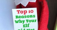 Top 10 Reasons Why Your Elf on the Shelf Did Not Move. A great article for parents to read to kids. LivingLocurto.com