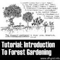 introduction to forest gardening