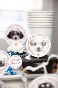 Personalized Valentine Cupcake Topper Kit Puppy Themed / First Birthday Dessert Table Decor / Valentines Day Class Treats $13.56