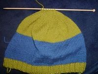 This is a free basic pattern for a hat. You do not need to know how to knit with circulars or double point needles - this pattern is meant for straight needles and the sides are then joined after it's knitted together.