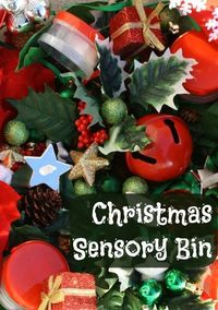 Description of sensory bin materials and many ways to use these materials in learning activities for kids.