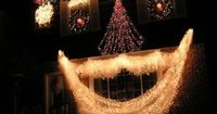 A beautiful Christmas light display makes your house a beacon of holiday joy. Deciding what the display will look like is an important first step -- for example