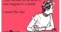 Funny Friendship Ecard: I just rescued some wine. It was trapped in a bottle. I saved the day! <3