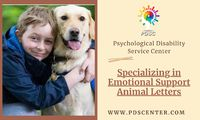 Animals give togetherness and emotional support to people who deal with mental disorders. These animals are called Emotional Support Animals. If anyone suffering from emotional and psychological disabilities like anxiety or depression, then you should go ...