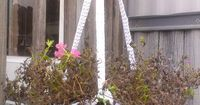 Mama Sweettater's: A New Crochet Plant Hanger