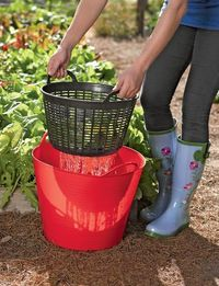 Rinse vegetables right in the garden